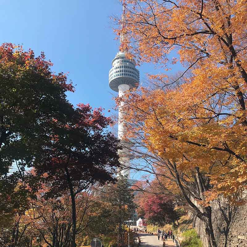 All You Need to Know Before You Visit the N Seoul Tower (Namsan Tower)